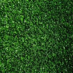 Rental store for Green Astroturf in Richmond VA